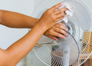 grahams_home_and_cleaning_care_home_cleaning_brisbane_clean_fan.jpg