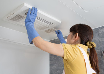 House Cleaning Brisbane Fan Home Cleaning