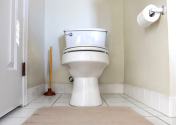 Efficient House Cleaning Toilet Cleaning